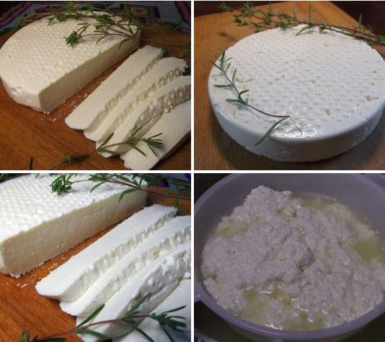 Как в домашних условиях приготовить сыр адыгейский