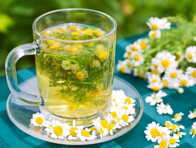 Вот почему наши бабушки обожают ромашковый чай: 15 целебных свойств 6