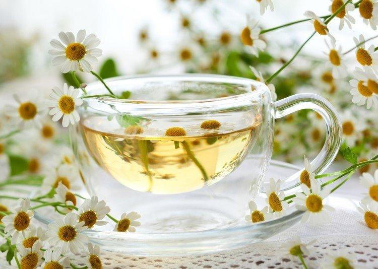 Вот почему наши бабушки обожают ромашковый чай: 15 целебных свойств 8