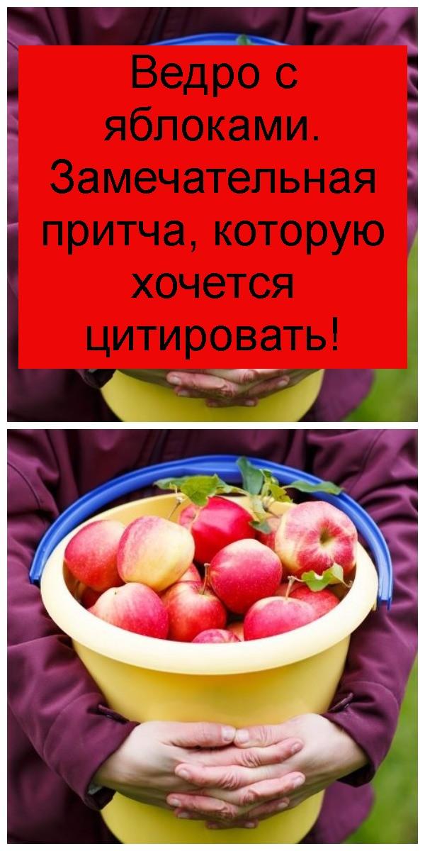 Ведро с яблоками. Замечательная притча, которую хочется цитировать 4